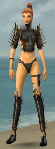 File:Assassin Exotic Armor F gray chest feet front.jpg