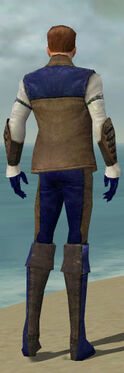Mesmer Enchanter Armor M dyed back