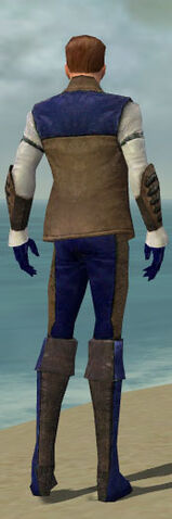 File:Mesmer Enchanter Armor M dyed back.jpg