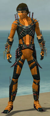 Assassin Elite Canthan Armor M dyed front