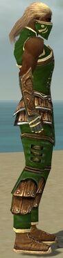 Ranger Shing Jea Armor M dyed side