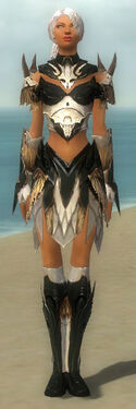 Paragon Norn Armor F dyed front