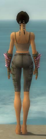 File:Ranger Drakescale Armor F gray arms legs back.jpg