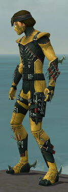 Assassin Seitung Armor M dyed side