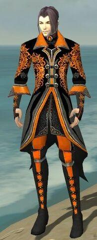 File:Elementalist Elite Kurzick Armor M dyed front.jpg