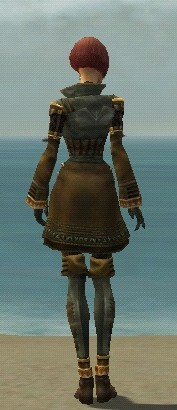 File:Mesmer Ancient Armor F gray back.jpg