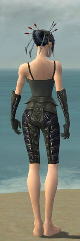 File:Necromancer Ascalon Armor F gray arms legs back.jpg