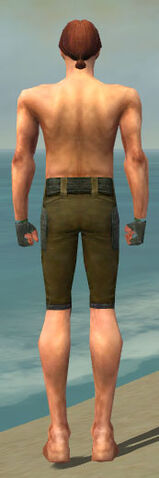 File:Mesmer Ascalon Armor M gray arms legs back.jpg