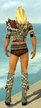 Ritualist Elite Imperial Armor M gray chest feet back