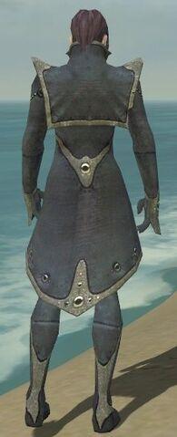File:Elementalist Tyrian Armor M gray back.jpg