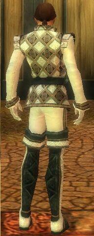 File:Mesmer Elite Noble Armor M dyed back.jpg