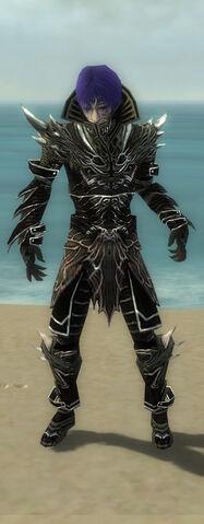 File:Necromancer Elite Luxon Armor M gray front.jpg