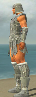 Warrior Ascalon Armor M gray side