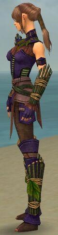 File:Ranger Druid Armor F dyed side.jpg