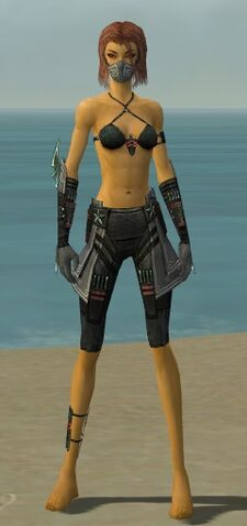 File:Assassin Luxon Armor F gray arms legs front.jpg