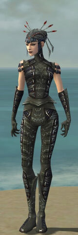 File:Necromancer Ascalon Armor F gray front.jpg