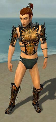 File:Assassin Elite Exotic Armor M gray chest feet front.jpg