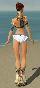 Elementalist Elite Sunspear Armor F gray chest feet back