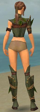 File:Ranger Druid Armor F gray chest feet back.jpg
