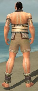 Monk Istani Armor M gray chest feet back