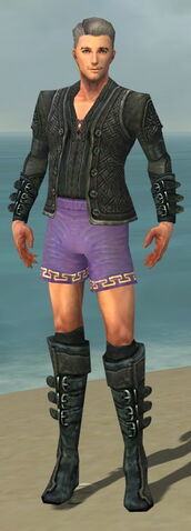 File:Mesmer Elite Rogue Armor M gray chest feet front.jpg