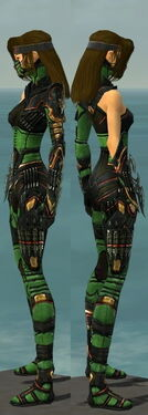 Assassin Elite Kurzick Armor F dyed side