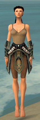 File:Ranger Kurzick Armor F gray arms legs front.jpg