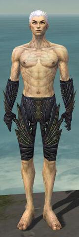 File:Necromancer Krytan Armor M gray arms legs front.jpg