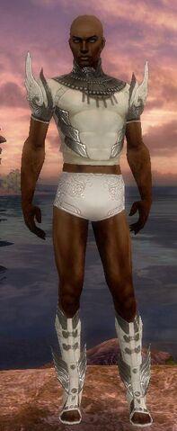 File:Paragon Vabbian Armor M gray chest feet front.jpg