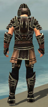 Warrior Ancient Armor M gray back