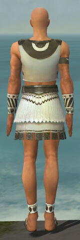 File:Paragon Istani Armor M gray back.jpg