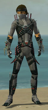 Assassin Elite Canthan Armor M gray front