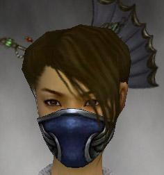 File:Assassin Norn Armor F gray head front.jpg
