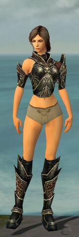 File:Warrior Kurzick Armor F gray chest feet front.jpg
