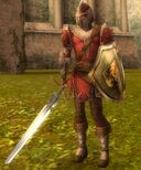 Pre-Searing Ascalon Guard