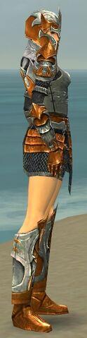 File:Warrior Elite Templar Armor F dyed side.jpg