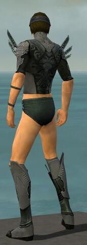 File:Assassin Imperial Armor M gray chest feet back.jpg