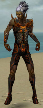 Necromancer Istani Armor M dyed front
