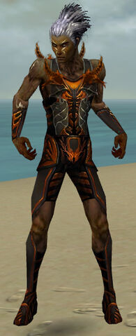 File:Necromancer Istani Armor M dyed front.jpg