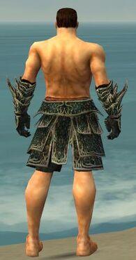 Warrior Elite Luxon Armor M gray arms legs back