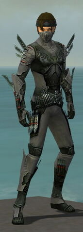 File:Assassin Imperial Armor M gray front.jpg