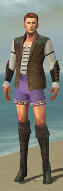 Mesmer Enchanter Armor M gray chest feet front