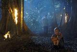 Rikki In Forest