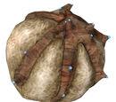 Pheropods