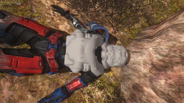 File:SWAT -Halo- Reach glitch-.jpg