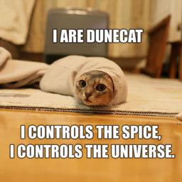 File:256px-1203835643 Dune Cat.jpg
