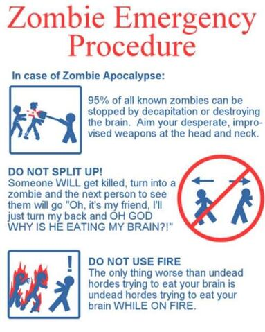 File:1212545395 In Case Of Zombies.jpg