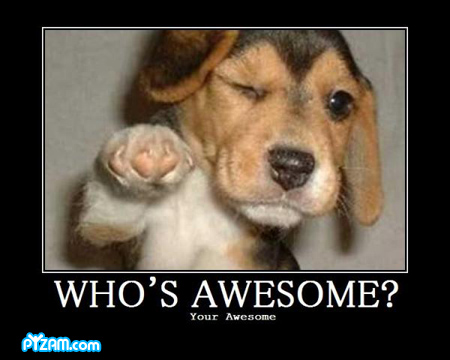 File:Who's awesome? Your awesome.jpg