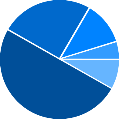File:Demographic Chart - Age.png