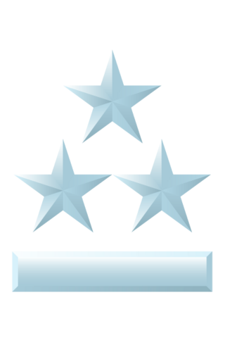 File:Colonel Grade Two.png